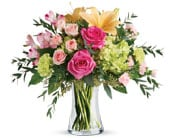 Fantasia Blush in blackburn , petals florist network