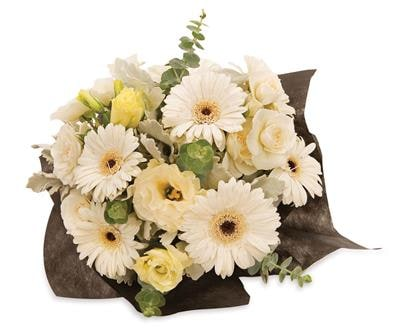 White Beauty in Dapto , Avondale Florist