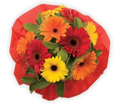 Bright Delight in Dural , Dural Flower Farm-Florist