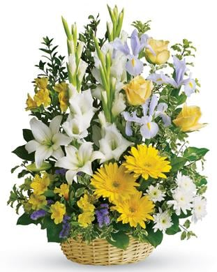 Basket of Memories for flower delivery New Zealand wide
