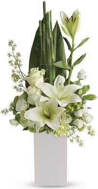Peace and Harmony in Erindale , Kensington Florist
