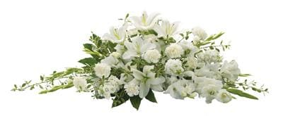 Bountiful Memories for flower delivery New Zealand wide