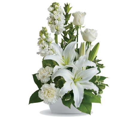 White Simplicity in Hobart , Florist Works - Hobart Flowers