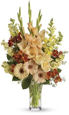 Summer's Light in Port Macquarie , Port City Florist