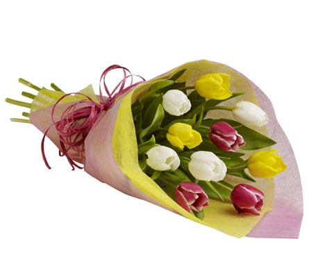Tulip Treasure for flower delivery New Zealand wide