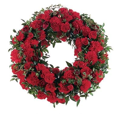 Red Regards in Brisbane , Brisbane Online Florist