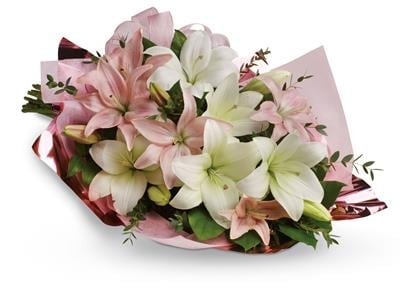 Lovely Lilies in Chevron Island , Flowers On Chevron