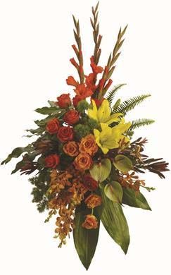 Tropical Tribute in Bellbrae , Bee's Florist