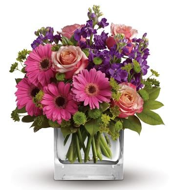 Sweet Promises in Winston Hills , Colour On Stem Florist