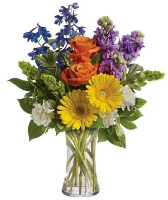 Beautiful Day in Brisbane , Brisbane Online Florist