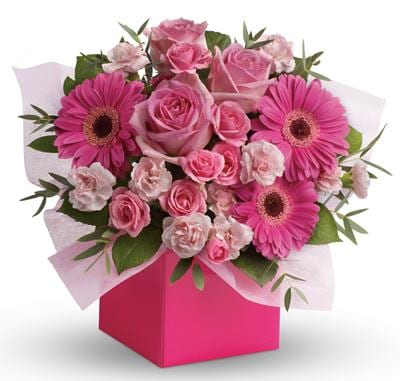 Think Pink in Winston Hills , Colour On Stem Florist