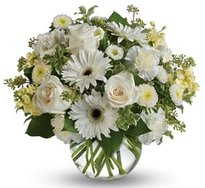 Isle of White in Taree , Blooms Florist