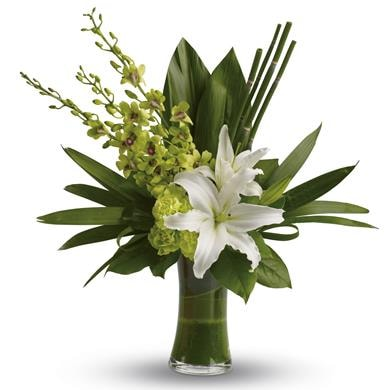 Splendour for flower delivery New Zealand wide