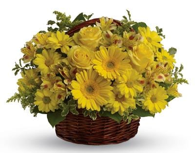 Basket of Sunshine in Bellbrae , Bee's Florist