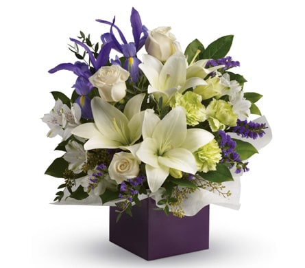 Graceful Beauty in Harristown , Harristown Florist