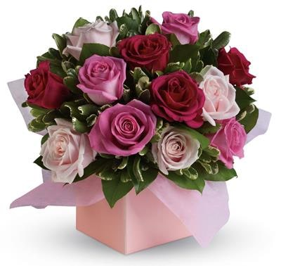 Blushing Roses for flower delivery Australia wide