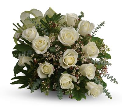 Dreamy White Dozen in Wynnum , Wynnum Plaza Florist