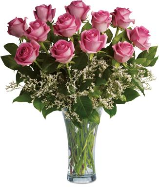 Perfect Pink Dozen in Rolleston , Rolleston Florist And Gift