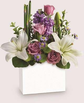 Kissed with Bliss in Clayton, Melbourne , Abbadeen Florist