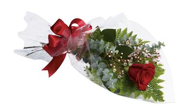 The One and Only in Brisbane , Brisbane Online Florist