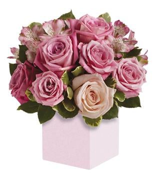Indulgence in Geelong , Petals Florist Network