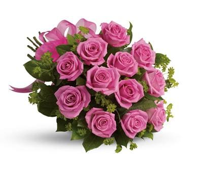 Blushing Dozen in Tenterfield , Loganlea Nursery & Florist