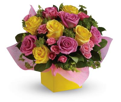 Rosy Sunshine for flower delivery Australia wide