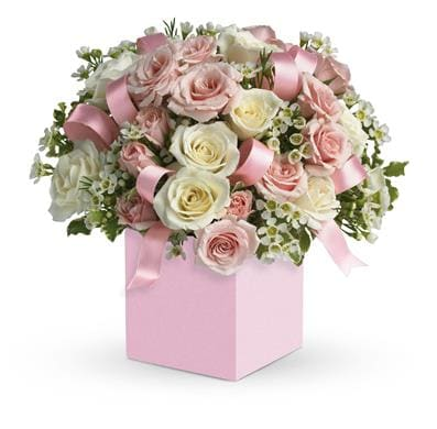 Celebrating Baby Girl in Burwood Heights , Mona Lisa Florist