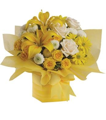 Sweet Sunshine in Salisbury , Flowers By Marisa Salisbury Florist