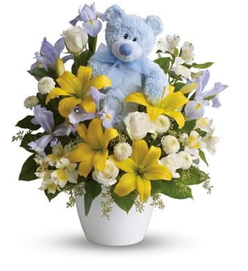 Cuddles for Him in Hokitika , Fleur De Lis Florist