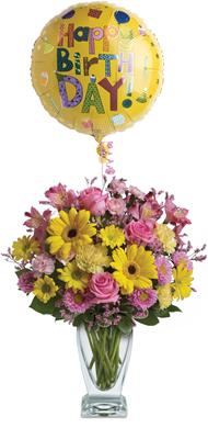Dazzle Her in Brisbane Cbd , Florists Flower Shop Brisbane