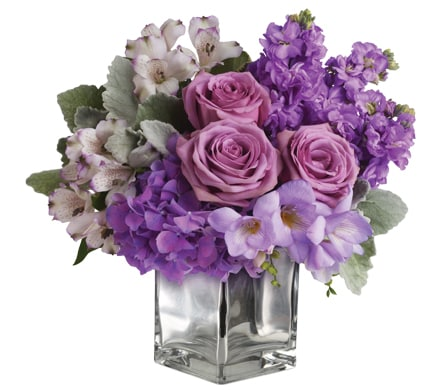 Image result for purple and pink flowers