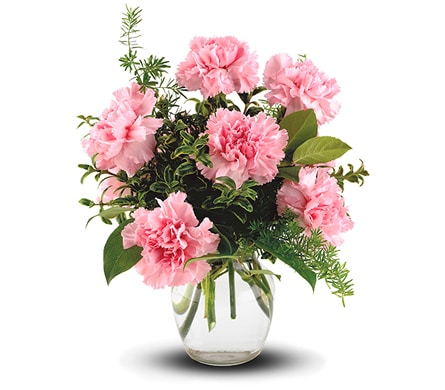 Pink Notion in Nundah , Nundah Florist