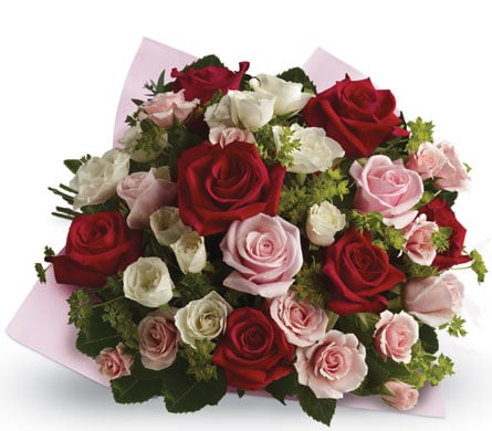 Love Letters in Geelong , Petals Florist Network