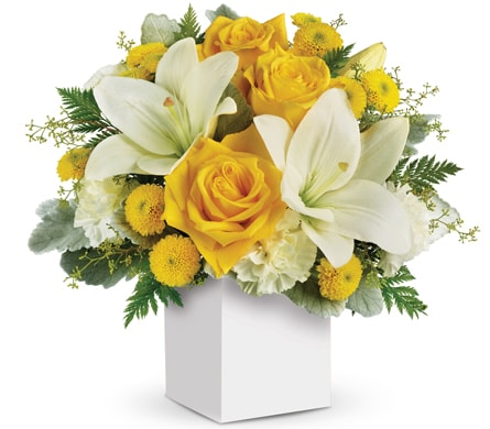 Golden Laughter in Swan Hill , Francis Florist