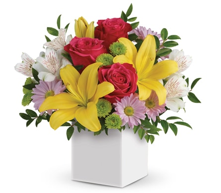 Perfect Delight for flower delivery New Zealand wide