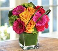 Katoomba Florists - Flowers in Katoomba NSW - Katoomba Fine Flowers
