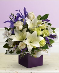 Kingswood Florists - Flowers in Kingswood NSW - Kingswood Florist